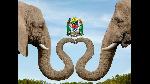 Tanzania rasmi muhuri wa safe travels