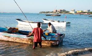 Gumzo!!Samaki wa ajabu anaepaa aonekana Dar es Salaam