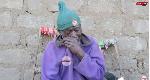 Mzee Matata