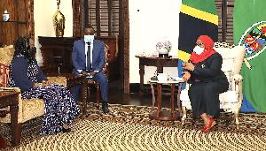 Rais Samia, akipokea Hati za Utambulisho kutoka kwa Mabalozi Wateule
