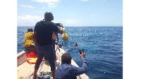 Ongezeko la tindikali baharini latishia mazalia ya samaki