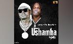 AudioMPYA: Harmonize katuletea Ushamba Remix akiwa na Naira Marley